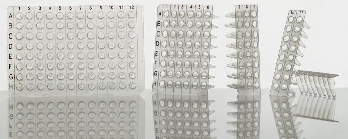 Tear-A-Way 96/8, 96well PCR Plate, divisible in 8strip direction, non-skirted, clear, black grid reference, Pk/50
